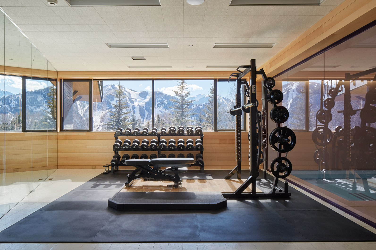 fabulous-home-gyms
